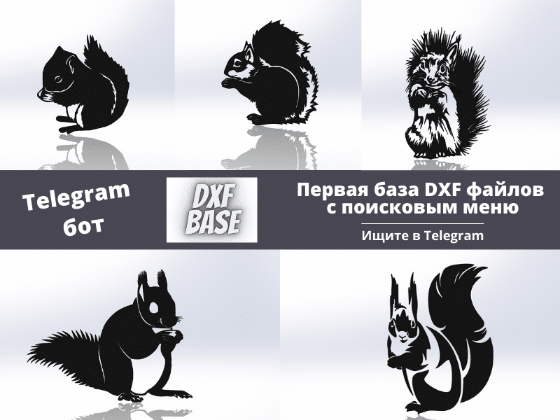 Белка DXF файл